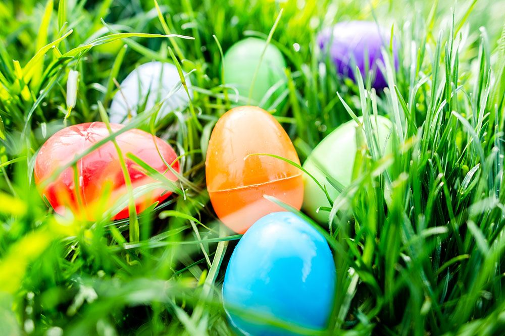 """Egg""Straordinary Spring Celebration to be held April 20"