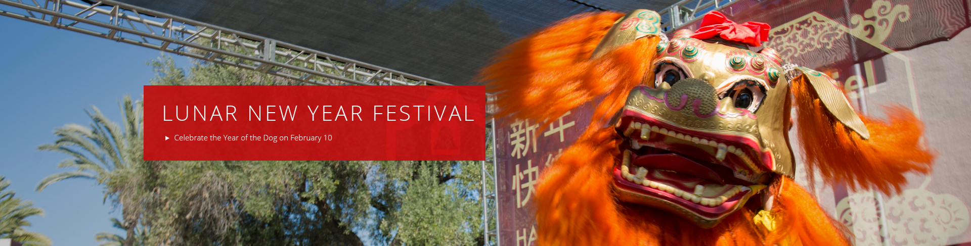 Celebrate the Year of the Dog at this year's Lunar New Year Festival!