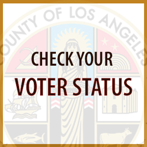 Check Voter Status Link